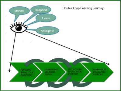 single loop learning organisation example