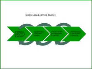 singleloop learning journey